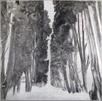 Grande Segnavia - Disegno - Antonino Amato