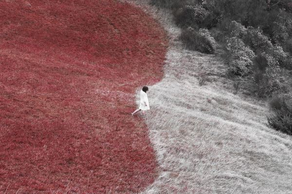 Jisei no ku #21 - Photography - Silvia Montevecchi