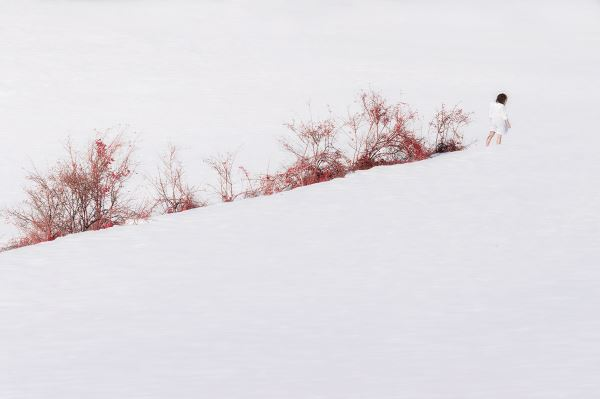 Jisei no ku #20 - Photography - Silvia Montevecchi