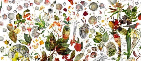 Famelicità Circuitale  - Painting - Paola Tassetti