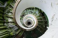 Green Inferno - Photography - Nicola Bertellotti